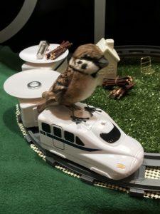 新幹線に乗ったスズメさんが回っております!
